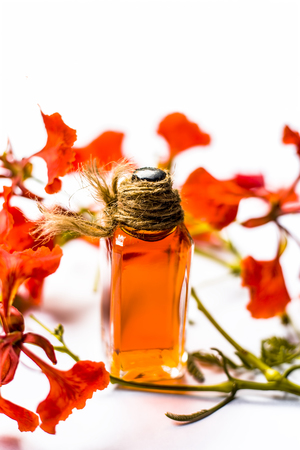 Flame tree or Gulmohor or Goolmohor tree flower's essence in a transparent bottle isolated on white. Stock Photo