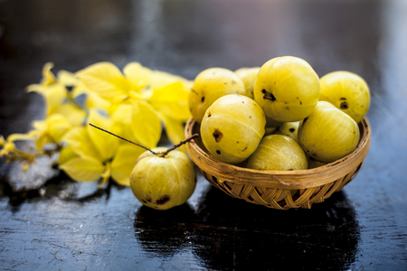 Close up of organic raw Indian gooseberry or amla or Ribes uva-crispa in a vegetable and fruit basket made up of bamboo on wooden surface with some leaves of Rangoon's creeper. Archivio Fotografico
