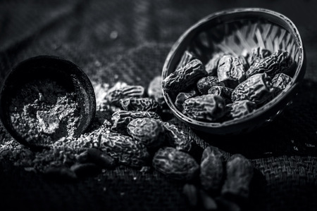 Close up of raw dried organic kharek or dried dates or Phoenix dactylifera with its powder in a black colored clay bowl.