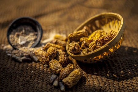 Close up of raw dried organic kharek or dried dates or Phoenix dactylifera with its powder in a black colored clay bowl. Imagens - 124596371