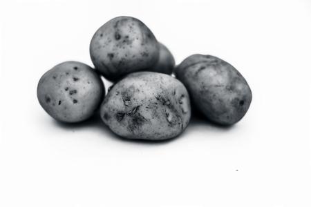 Close up of raw organic potato or Solanum tuberosumor aaloo or alu isolated on white.