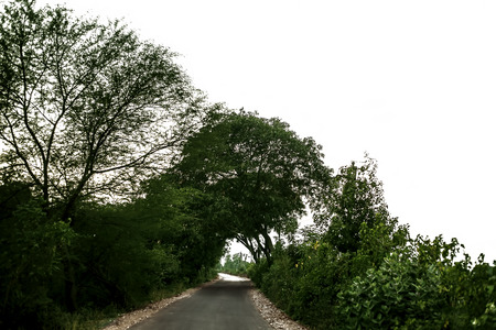 Roads passing through the green fields on both the sides isolated. Imagens