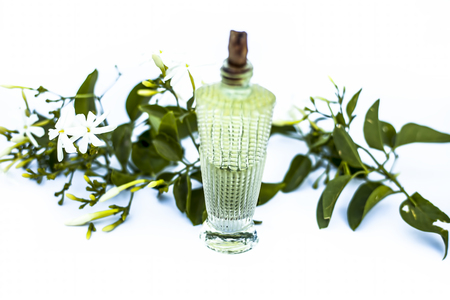 Close up of spray or perfume of Indian jasmine flower or juhi or Jasminum Auriculatum isolated on white in a small bottle with raw flowers.
