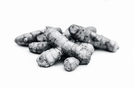 Close up of raw fresh organic ginger isolated on white also knwon as adrak or Zingiber officinale.