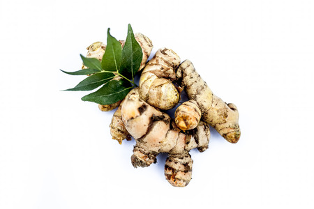 Close up of popular Indian & Asian raw organic herb or ayurvedic herb isolated on white i.e. Amba haldi or Mango ginger or white ginger or Curcuma amada.