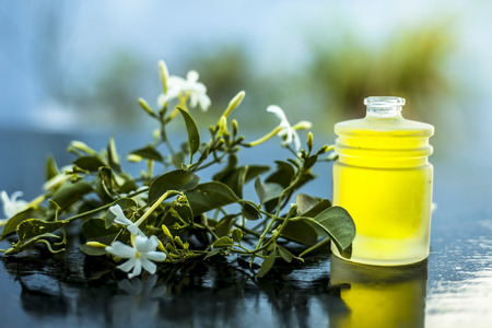 Close up shot of extracted essential oil of Indian jasmine flower in a transparent glass bottle on wooden surface with raw jasmine flowers.
