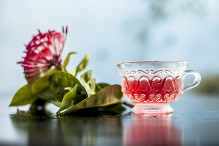 Close up of red colored pentas flower or Egyptian Star Flower or jasmine on wooden surface with its extracted beneficial detoxifying tea in a glass cup.