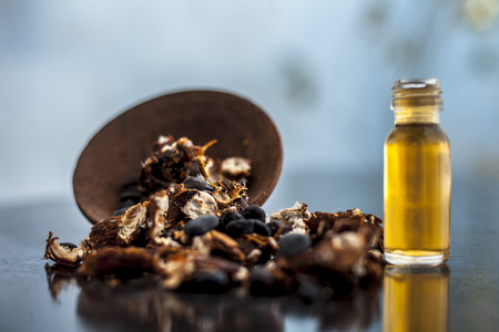 Tamarind or imli or amli in a clay bowl along with its roasted seeds and extract essential oil or concentration or essence in a glass bottle on black colored wooden surface.