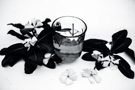 White colored flowers with its extracted in a transparent glass isolated on white along with leaves of flowers.