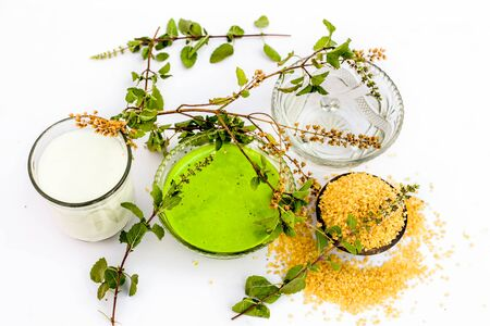 Tulsi face pack or face mask isolated on white i.e. Oatmeal well mixed with tulsi or holy basil with milk and water used for tans or sun burns.