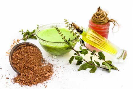 Tulsi face pack isolated on white consisting of sandal wood powder well mixed with tulsi leaves with the help of fuller' earth and rose water.Used for instant glow.