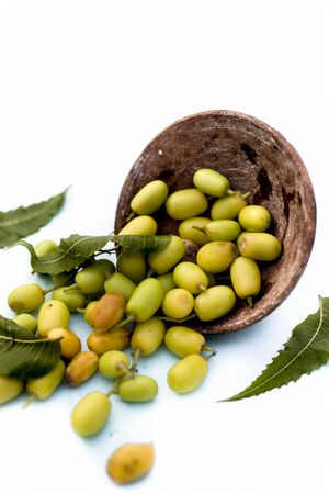 Neem fruit or nim fruit or Indian lilac fruit in a clay bowl isolated on white along with some fresh leaves also.Vertical shot. Фото со стока