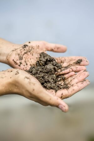 Close up of hands of a farmer holding new fresh soil after rain in his hands and showing to the camera. Standard-Bild - 131493729