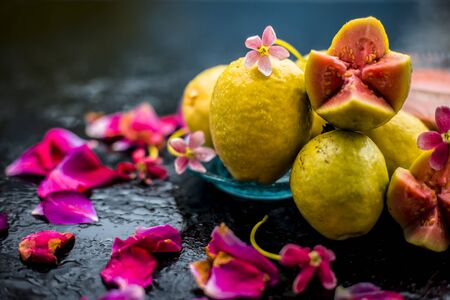 Raw organic guava or amrut or amarood in Hindi language on black shinny surface in a blue-colored plate with some rose petals.
