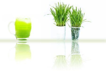 Pots containing lemon grass along with their extracted juice in a glass isolated on white with reflection also.