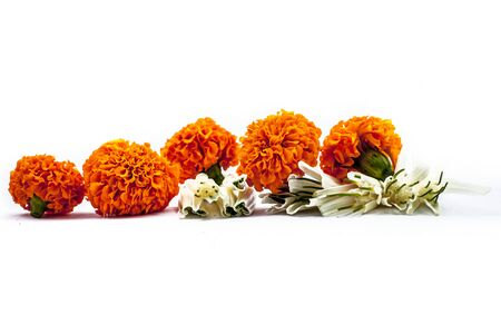 Close up of fresh-cut Narcissus or Nargis flowers isolated on white. Also known as poets daffodil. Along with some orange-colored marigold flowers also.