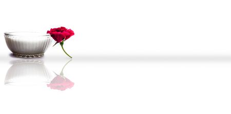 Close up shot of glass bowl full of milk along with a single red rose isolated on white along with its reflection.