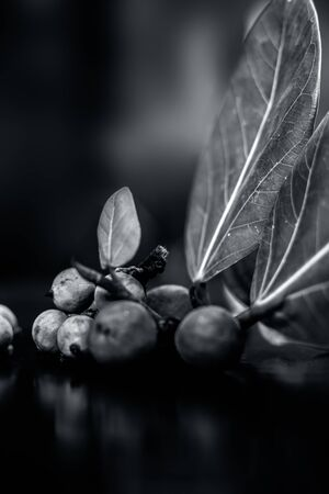 Close up shot of raw banyan tree fruit along with its leaves on a black wooden surface with blurreddefocused background.