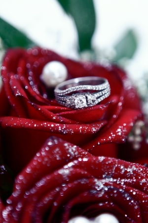 marrage: Wedding rings on red roses
