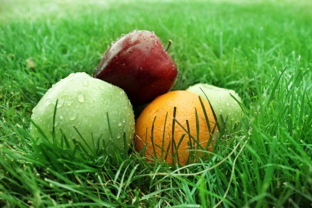 Fruit on the grass photo