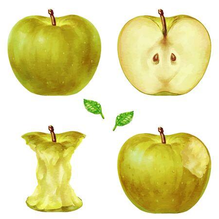 Yellow Apple Apple Illustration