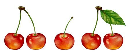 Cherry Cherry Illustrations