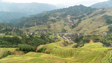 Famous Longji rice terraces (also  Longsheng rice terraces) during early spring, China
