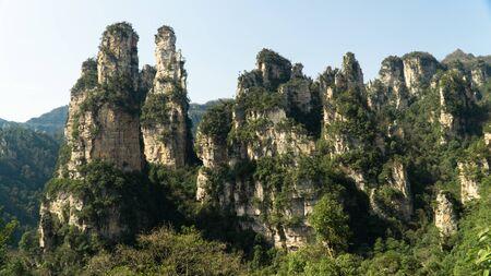 The Zhangjiajie National Forest Park - a unique national forest park with thousands of quartz-sandstone pillars, China Stok Fotoğraf