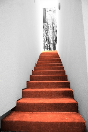 red stairs photo
