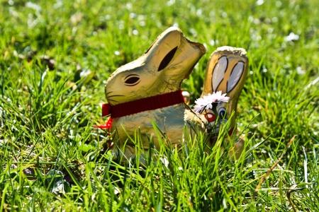 Easter Bunny Stock Photo - 18790265