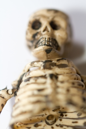skeleton photo