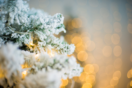 Close-up of a Christmas tree with snow on the background of a blurred bright background