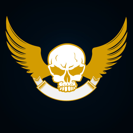 simplistic icon: Illustration of a skull with emblem and wings - decorative element