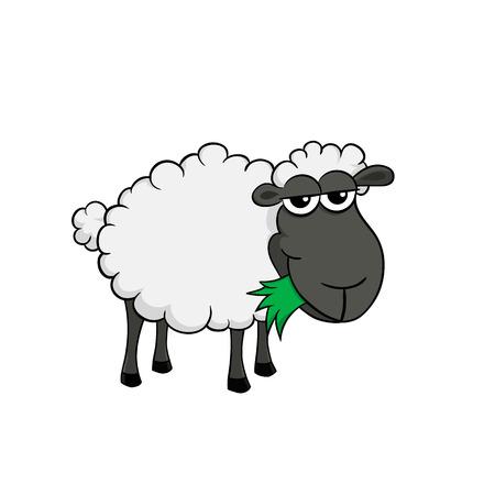 Geïsoleerde illustratie van een cartoon schapen eten gras