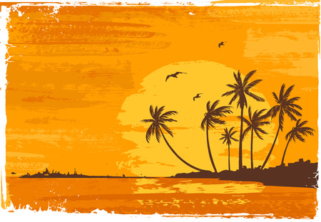 Sunset. Tropical beach. Illustration