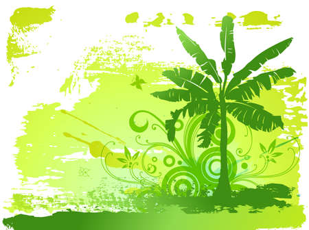 Banana palm tree and flowers photo