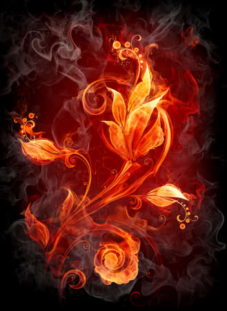 Fire flower photo