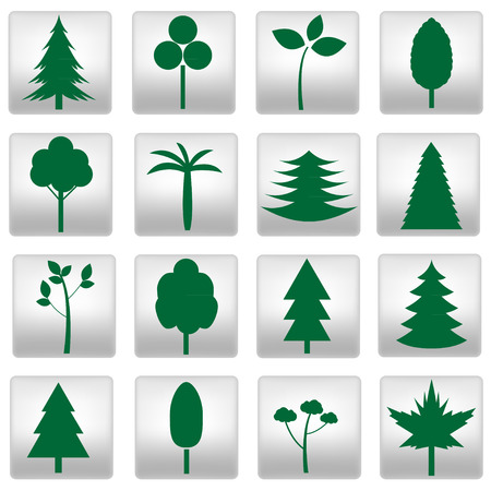 Collection of different trees icons. Vector illustration. Vector