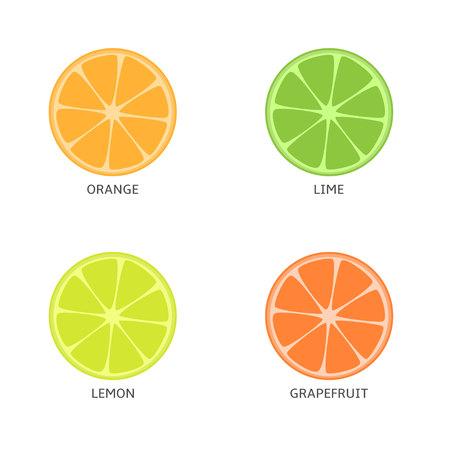 Pieces of citrus fruits. Orange lime lemon grapefruit