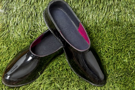 black rubber galoshes lay on a background of green grass.