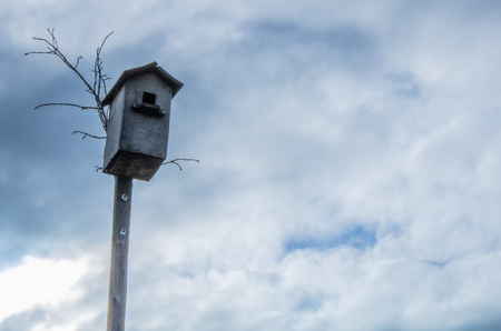 Village. Rural. The sky before the rain. The birdhouse on the background of the cloudy sky.