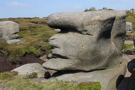 erratic: Stone Face
