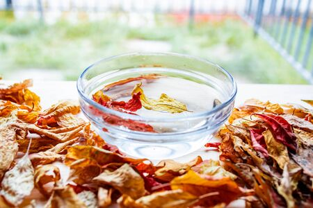 Dry autumn leaves float in water in a glass transparent bowl standing on a wooden table