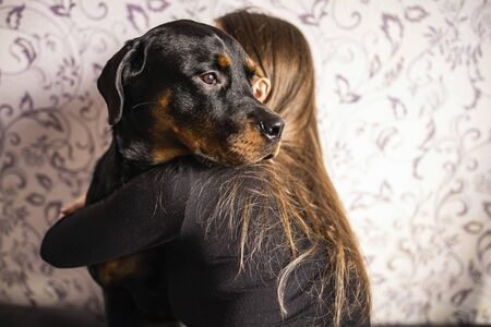 girl in a black jacket hugs a black dog on a background of patterned wall Фото со стока