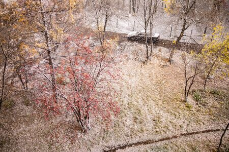 Autumn nature. First snow. Heavy snow flakes falling on the autumn nature near the roadway.