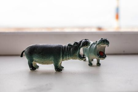 little hippo figures are standing by the window Фото со стока