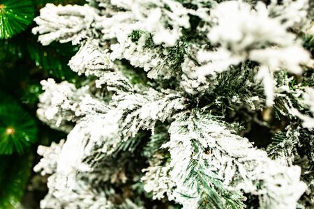 fir branches in the snow before the new year in the store.