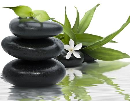 steine im wasser: Spa Stilleben mit schwarzen Steinen und Bambus-Bl�tter in das Wasser