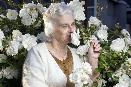 Happy senior dame dans le jardin de roses Banque d'images