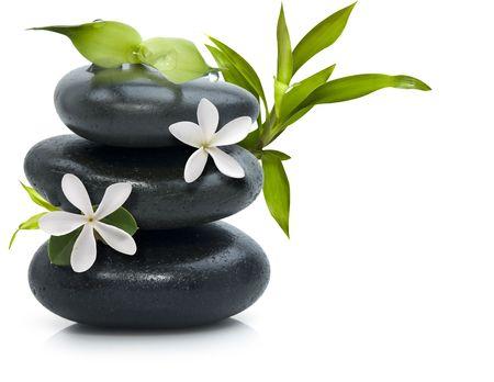 Spa encore la vie avec des fleurs blanches Banque d'images - 4758977